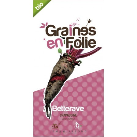 Betterave rouge crapaudine Bio graines en folie